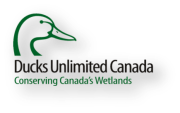 http://sccp.ca/sites/default/files/Logo/ducks%20logo.png