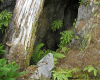 karst cave entrance in BC Paul Griffiths